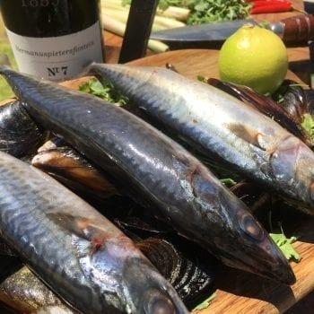 woodfired mackerel